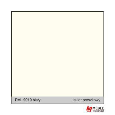 RAL 9010 biały
