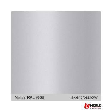 RAL 9006 metalic